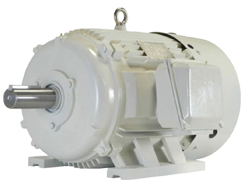 Baldor oil well pump motor